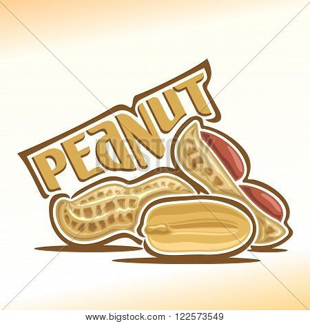Vector illustration on the theme of the logo for peanut nuts, consisting of peeled half peanut nutlet and two nuts in the nutshell