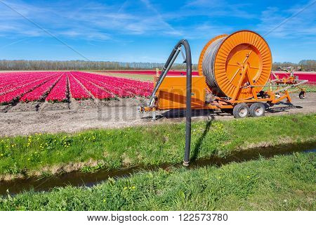 Agricultural spraying equipment pumping water from ditch to tulips flowers