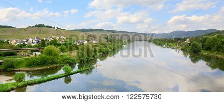 Idyllic Mosel River At Springtime, Hillside Vineyards