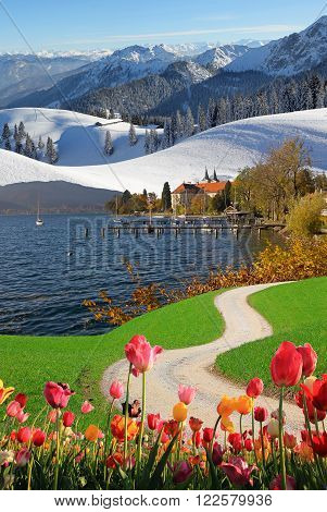 Four Seasons Collage Bavarian Landscape