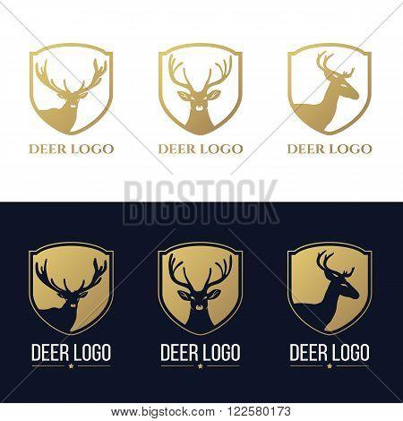 Gold head deer logo isolate on white and dark blue background vector set design