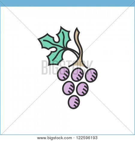 Wine grape vector icon. Linear style