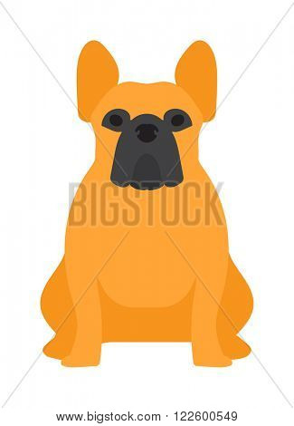Shepherd dog pet and icon shepherd dog vector. Flat shepherd retriever dog domestic animal vector illustration.
