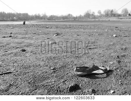 lost sandal on the muddy bank of a drying pond in black and white