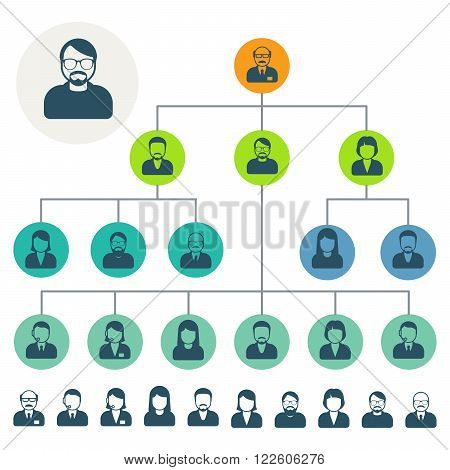Staff hierarchy or organization structure scheme, employee