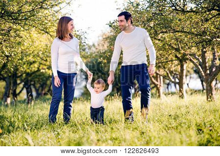 Mother and father holding hands of their little son making first steps outside in green sunny nature