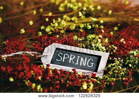 the word spring written in a label-shaped blackboard surrounded by many red and yellow small flowers