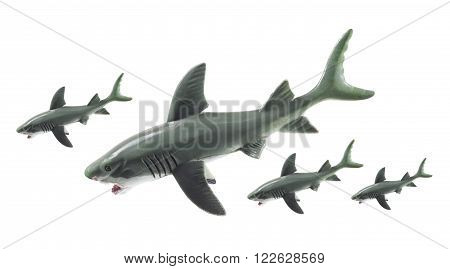 Rubber Sharks on an Isolated White Background
