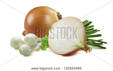 Yellow green spring onion whole half scallion parsley herb isolated on white background as package design element