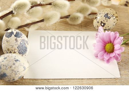 Blank Card Easter Greetings Wooden Plank,eggs,catkins,feathers,pink Flowe