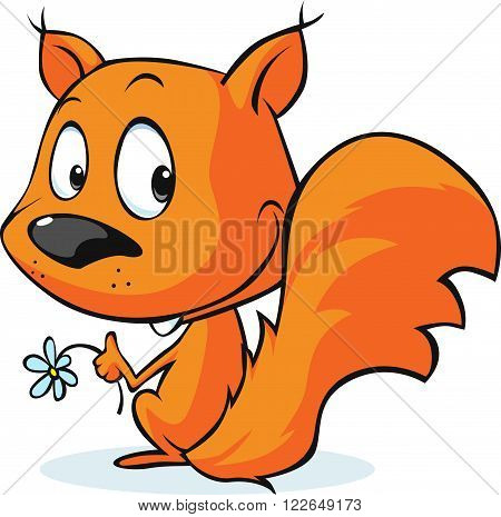 cute vector red squirrel isolated on white background