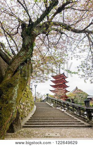 Big old Pagoda at Itsukushima Shrine, located close to Miyajima island, Japan. ** Note: Soft Focus at 100%, best at smaller sizes