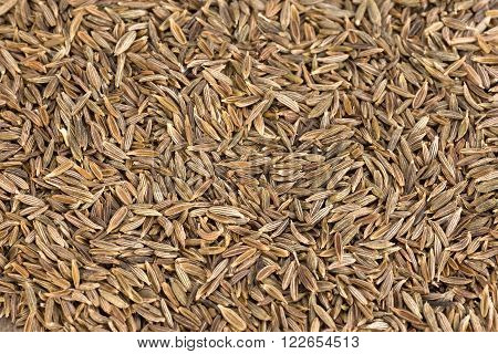 zira - caraway seeds as a background