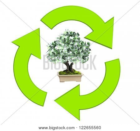 3d money tree euro banknotes and three arrows of green color. Isolated on white background