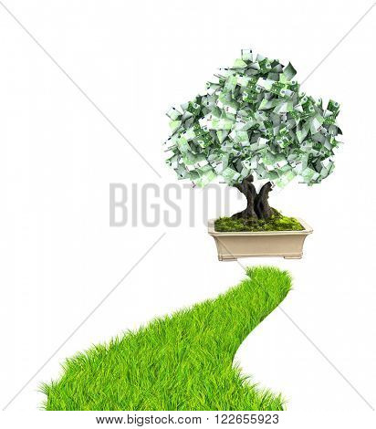 3d money tree euro banknotes and road with green grass. Isolated on white background