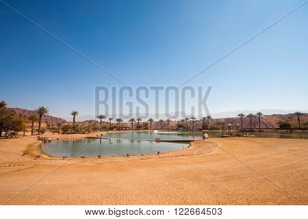 The Timna Lake - Oasis in Timna park Israel