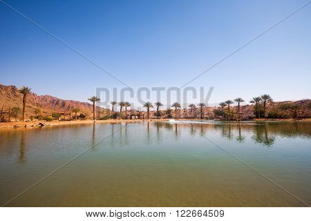 The Timna Oasis Lake in Timna park Israel