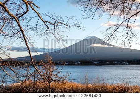 Beautiful view of Mount Fuji through branches of trees at Lake Kawaguchi in autumn. This mountain is a famous natural landmark of Japan