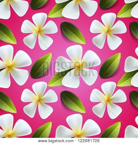 Frangipani flowers seamless pattern. Useful thai flower ornament for clothing usually for Thailand's new year celebration called Songkran Festival, vector illustration.