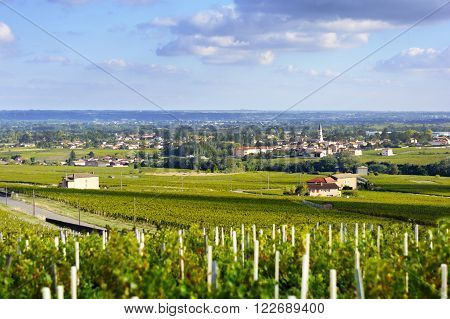 Romaneche village and vineyards at Beaujolais, France