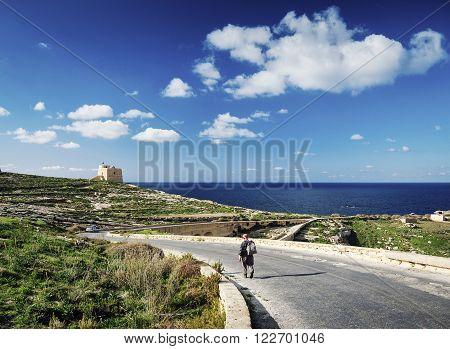 shepherd on road near fort and mediterranean coast view of gozo island in malta