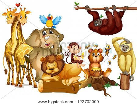Many kind of wild animals illustration