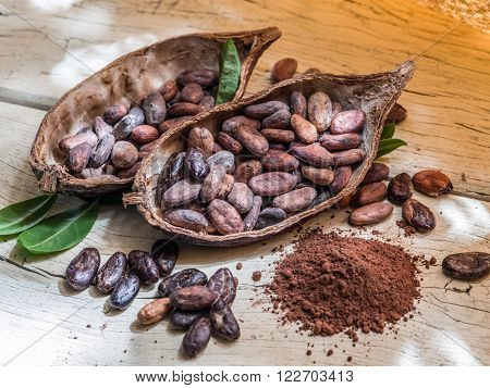 Cocoa powder and cocao beans on the wooden table.