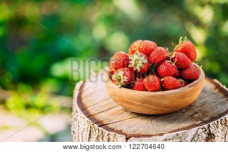 Berries Strawberries Closeup. Ripe Strawberry In Fruit Garden, Old Wooden Bowl Filled With Succulent Juicy Fresh Ripe Red Strawberries On Old Birch Stump ** Note: Shallow depth of field