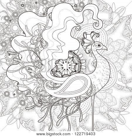 Attractive Peacock Coloring Page