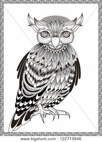 elegant owl coloring page in exquisite line