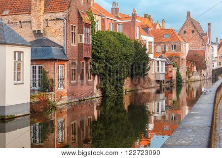 Scenic city view of Bruges canal with beautiful medieval houses and their reflection, seagull on parapet, Belgium
