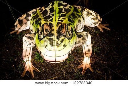 London United Kingdom - February 07 2016: Magical Lantern Festival at Chiswick House And Gardens. Installation of a toad lantern glowing in the dark