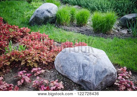 Decorative flower bed in a garden with rocks and plants close-up