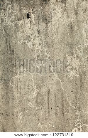 The Grungy Gray Concrete Old Texture Wall
