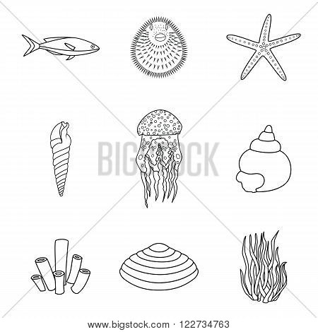 Collection of hand drawn sea creatures in modern mono line style on isolated white background. Vector starfish, jellyfish, fish, shells and seaweed