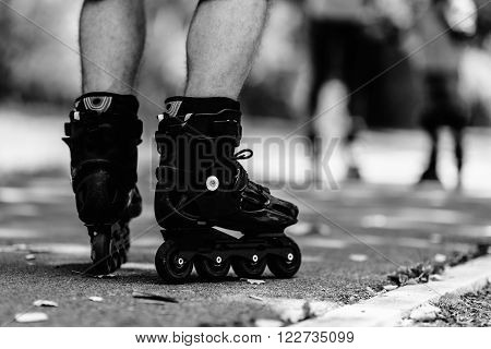 Father's Roller skaters in focus with mother and son in bacground
