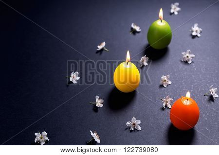 Colored candles in the shape of Easter egg with flowers on black background