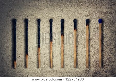 Set of burnt match at different stages as a financial chart or graph showing business growth. Leadership concept