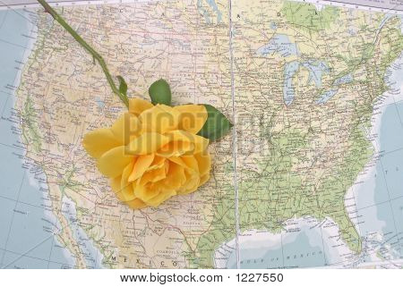 Texas With Yellow Rose