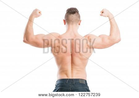 Muscular Male From The Back
