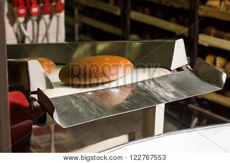 Freshly baked bread. Conveyor line with the bread. Plant of the production bread. Hot bread on the conveyor. Automated production of black bread. Delicious bread.