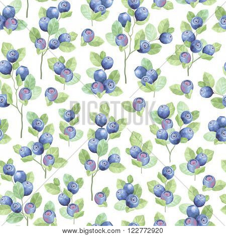 Seamless pattern of blueberry meadow on white background, vector illustration blueberry.