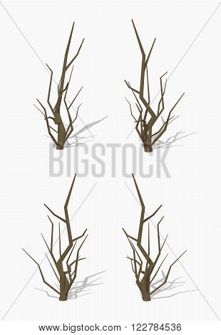 Dried tree. 3D lowpoly isometric vector illustration. The set of objects isolated against the white background and shown from different sides