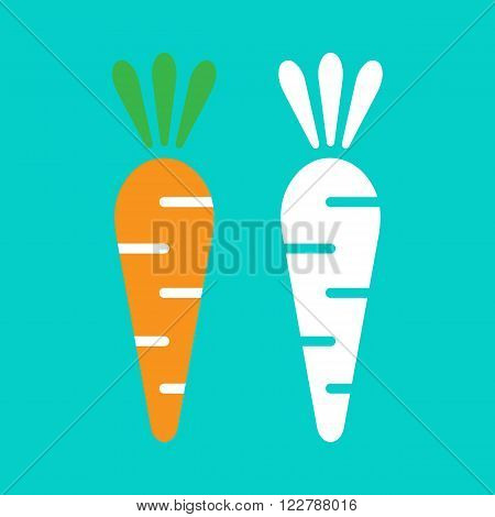 Vector carrot illustration in flat style. Vector carrot isolated on blue background. Carrot grey and cloour.