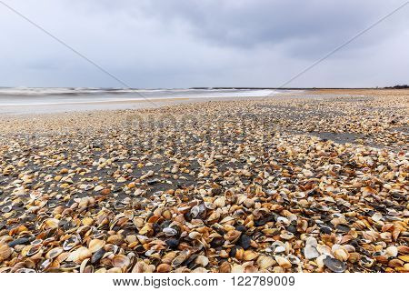 The coast of the Caspian Sea.Nabran.Azerbaijan.Nature background