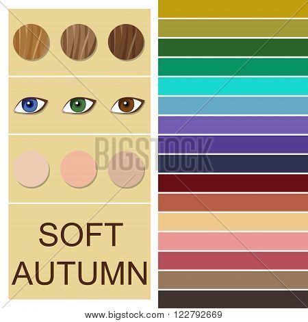 Stock vector seasonal color analysis palette for soft autumn type. Type of female appearance