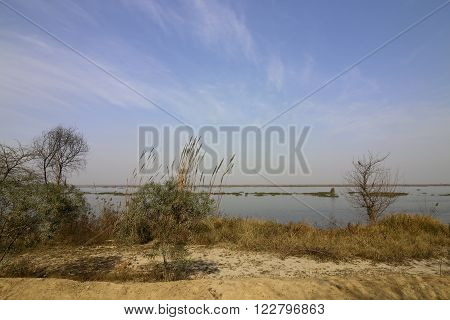 beautiful landscape of harike wetlands near amritsar punjab india under a blue sky in springtime