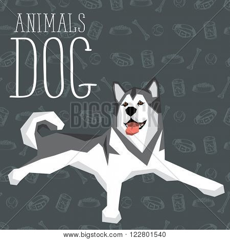 Vector geometric dogs collection with seamless background. Alaskan Malamute