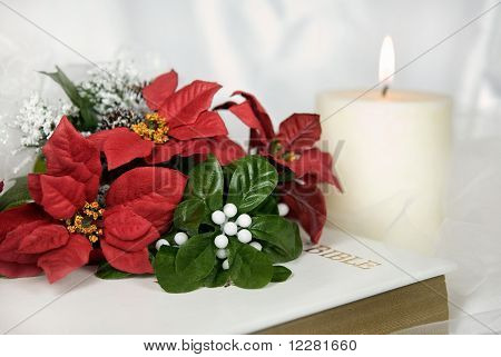 Poinsettia Bouquet