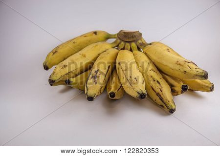 Bunch of fruits, banana type, with infinite background